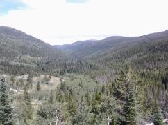 woodlandlake1