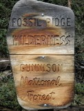 Fossil Ridge Wilderness of the Gunnison Natl Forest