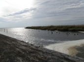 One look of Currituck Sound