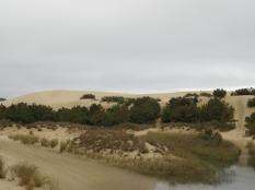 A look at Jockey's Ridge.