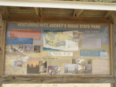 Jockey's Ridge info