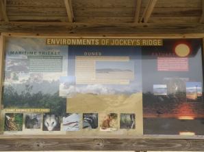 Environment info