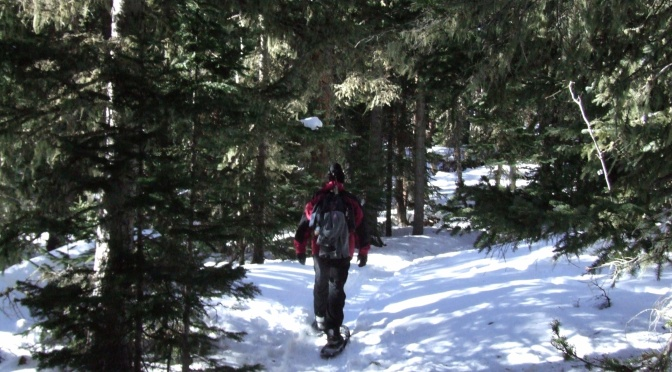 Snowshoeing Middle St. Vrain Trail in Peaceful Valley Jan 25 2014…