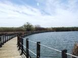 Fishing bridge over Lake Mary