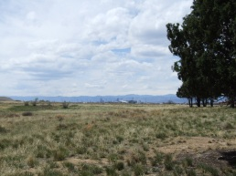 downtown Denver and Dick's Sporting Goods Park from a trail (no zoom)