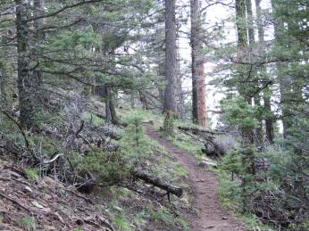 a look back on part of the trail