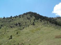 Look up at Mount Galbraith