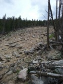 A look up from where the land slide started